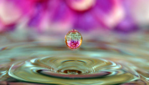 Water droplet flower