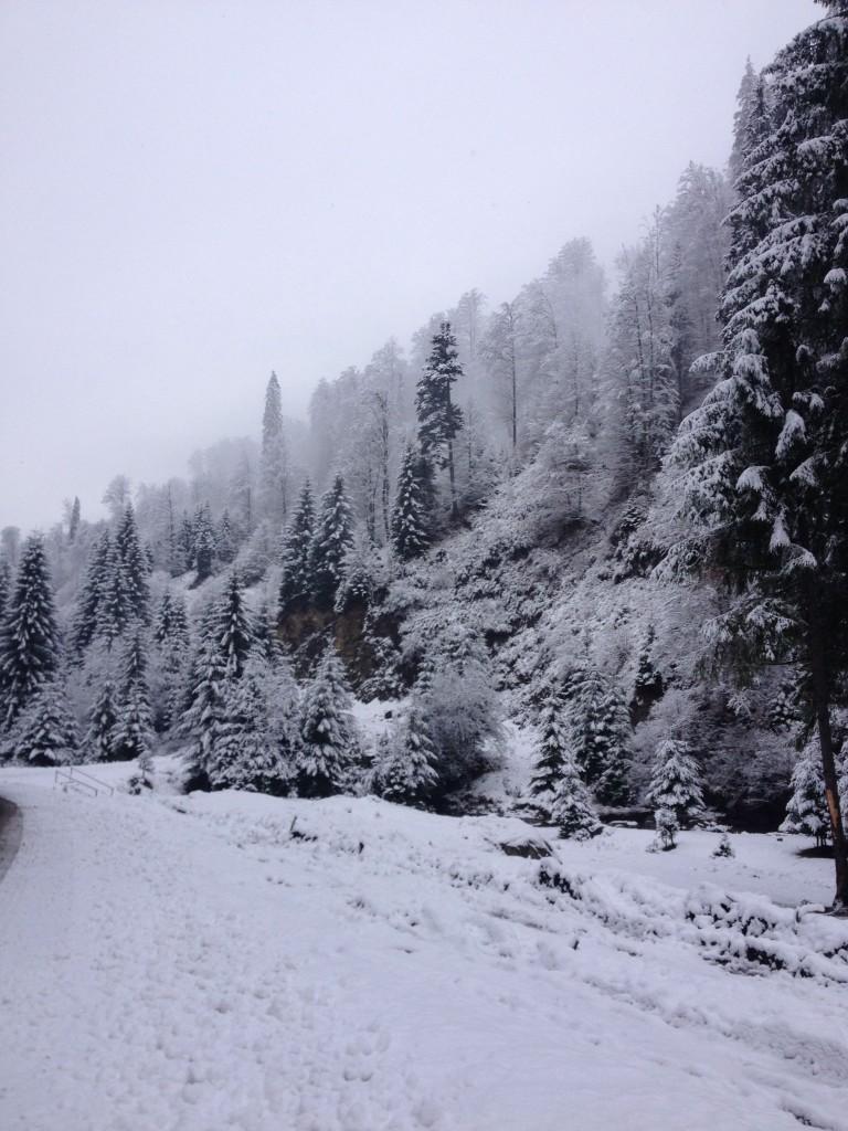 Transylvania First Snow 2015