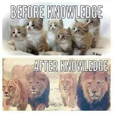 Before Knowledge, After Knowledge