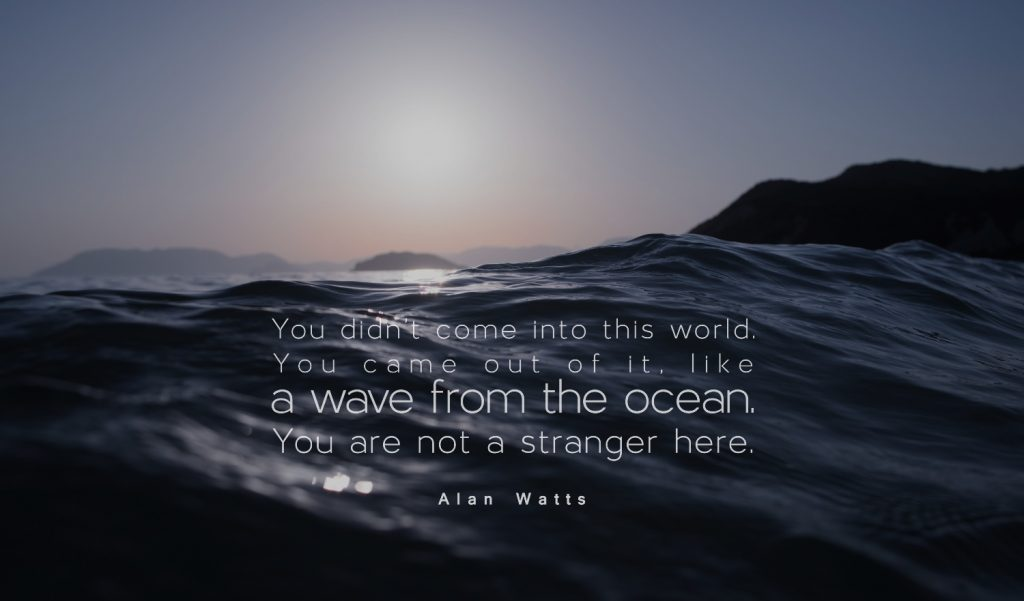 Alan Watts Ocean quote