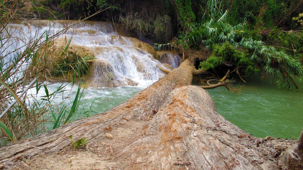 River with log bridge